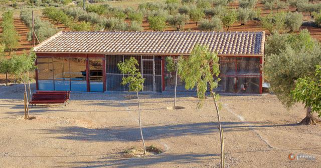complejo rural la tejera elche
